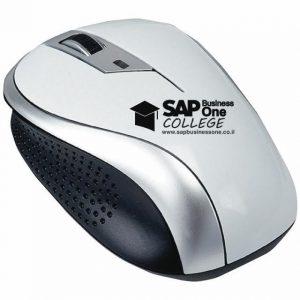 עכבר ממותג לsap business